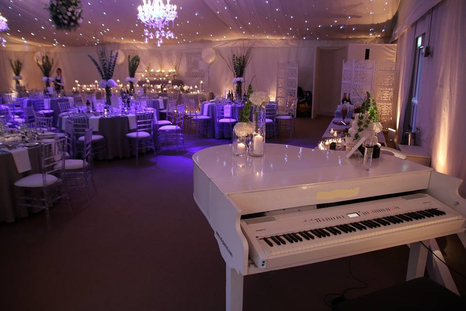 Grand Piano Musician for Wedding